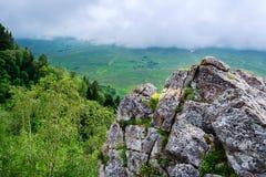 Vista cênico do prado da montanha Imagens de Stock