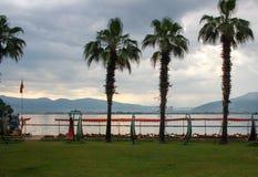 Vista cênico e bonita das palmeiras no costline imagens de stock royalty free