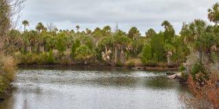 Vista cênico em Hernando County, Florida imagens de stock royalty free