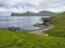 Vista cênico em penhascos bonitos de Hornbjarg nos fiordes ocidentais, reserva natural remota Hornstrandir em Islândia, com grama Fotografia de Stock Royalty Free