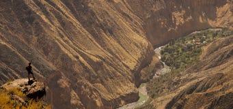 Vista cênico sobre a garganta de Colca, Peru imagens de stock