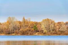 Vista caliente de árboles cerca del río de Dnieper en otoño Imagen de archivo