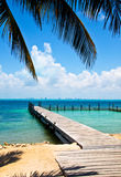 Vista caraibica Fotografia Stock Libera da Diritti