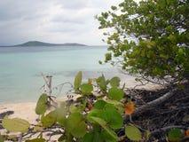 Vista caraibica dalla spiaggia, Porto Rico Fotografia Stock Libera da Diritti