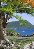Vista caraibica scenica Fotografia Stock Libera da Diritti