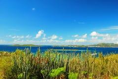 Vista caraibica, St John, isola vergine degli Stati Uniti Fotografia Stock Libera da Diritti