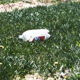 Vista cercana dejada en desorden de la soda trashed de Pepsi de 2 litros foto de archivo