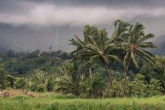 Vista che trascura Hanalei su Kauai, Hawai Immagini Stock
