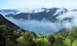 Vista of clouds, foliage, and bay Stock Photography