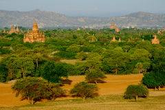 Vista cênico da paisagem, dos campos e dos templos em Bagan, Myanmar Fotos de Stock Royalty Free