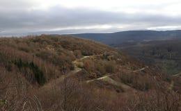 Vista colorida em montes e em árvores durante um dia de invernos suave, área de Manubach, Alemanha Foto de Stock