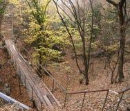 Vista com o coulee pequeno da ponte e do rio Foto de Stock Royalty Free