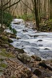 Vista congelada de pouco Stony Creek fotos de stock royalty free
