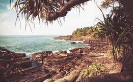 Vista d'annata di stile dell'oceano con le onde fredde, il bich roccioso, l'aloe vera ed i cocchi intorno Paesaggio tropicale Immagini Stock
