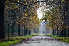 Vista d'autunno Immagine Stock