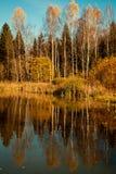 Vista d'autunno Immagini Stock