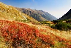 Vista d'autunno dalle montagne del rohace Fotografie Stock