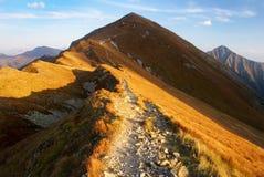 Vista d'autunno dalle montagne del rohace Fotografia Stock Libera da Diritti