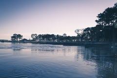 Vista da água e das árvores Foto de Stock Royalty Free