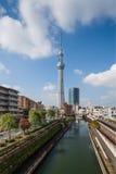 Vista da árvore do céu do Tóquio Imagens de Stock