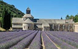 A vista da alfazema coloca na abadia de Senanque, Provence fotografia de stock
