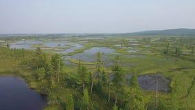 Vista da altura da natureza de Yamal vídeos de arquivo