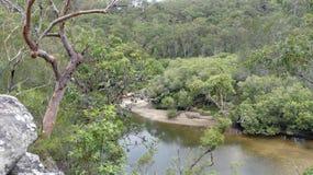 Vista da angra do berbigão, perseguição Nationalpark do Ku-anel-Gai, Austrália Imagens de Stock Royalty Free