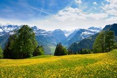 Vista da Braunwald Fotografia Stock
