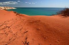 Vista da capo Peron Parco nazionale di François Peron Baia dello squalo Australia occidentale fotografia stock