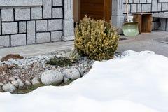 Vista da casa e do monte alpino com euonymus que aparece de debaixo da neve imagem de stock