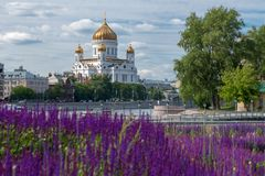 Vista da catedral de Christ o salvador Fotos de Stock Royalty Free