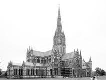 Vista da catedral de Salisbúria de Salisbúria do leste, Wiltshire, Reino Unido fotografia de stock