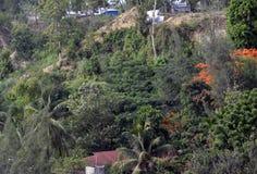 Vista da cidade imagens de stock