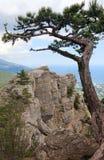 Vista da cidade de Yalta da inclinação da montagem de Aj-Petri Fotos de Stock