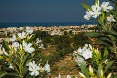 Vista da cidade Paphos, Chipre Imagem de Stock