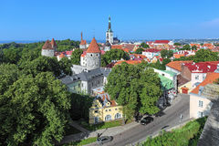 Vista da cidade velha de Tallinn, Estônia Fotos de Stock Royalty Free