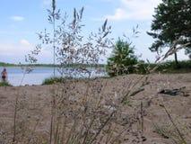 Vista da costa arenosa de um lago pequeno Imagens de Stock