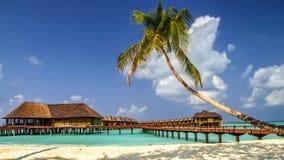 Vista da costa da ilha com bungalows da água, maldi do irufushi fotos de stock royalty free