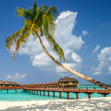 Vista da costa da ilha do irufushi, bungalows da água, maldives imagens de stock