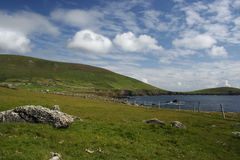 Vista da costa da península do Dingle do pasto Fotos de Stock Royalty Free
