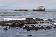 Vista da costa de Califórnia imagens de stock royalty free