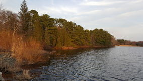 Vista da costa do lago Imagens de Stock