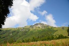 Vista da escala, das montanhas e das florestas caucasianos da Abkhásia Foto de Stock