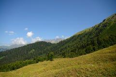 Vista da escala, das montanhas e das florestas caucasianos da Abkhásia Fotografia de Stock Royalty Free