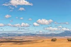 Vista da estrada de Middelplaas para a vento-exploração agrícola em Caledon Fotos de Stock Royalty Free
