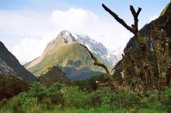 Vista da estrada de Te Anau Milford Foto de Stock