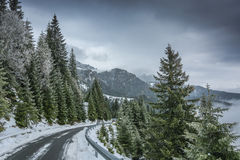 Vista da estrada de Transbucegi Imagens de Stock Royalty Free