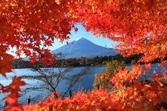 Vista da folha do outono com o Monte Fuji no lago Kawaguchi em Yamanashi, Japão fotografia de stock