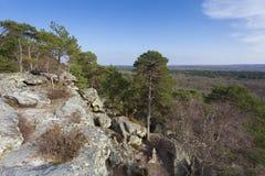 Vista da Fontainebleau Fotografia Stock