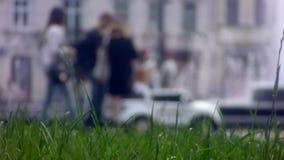 Vista da fonte do gramado exatamente filme